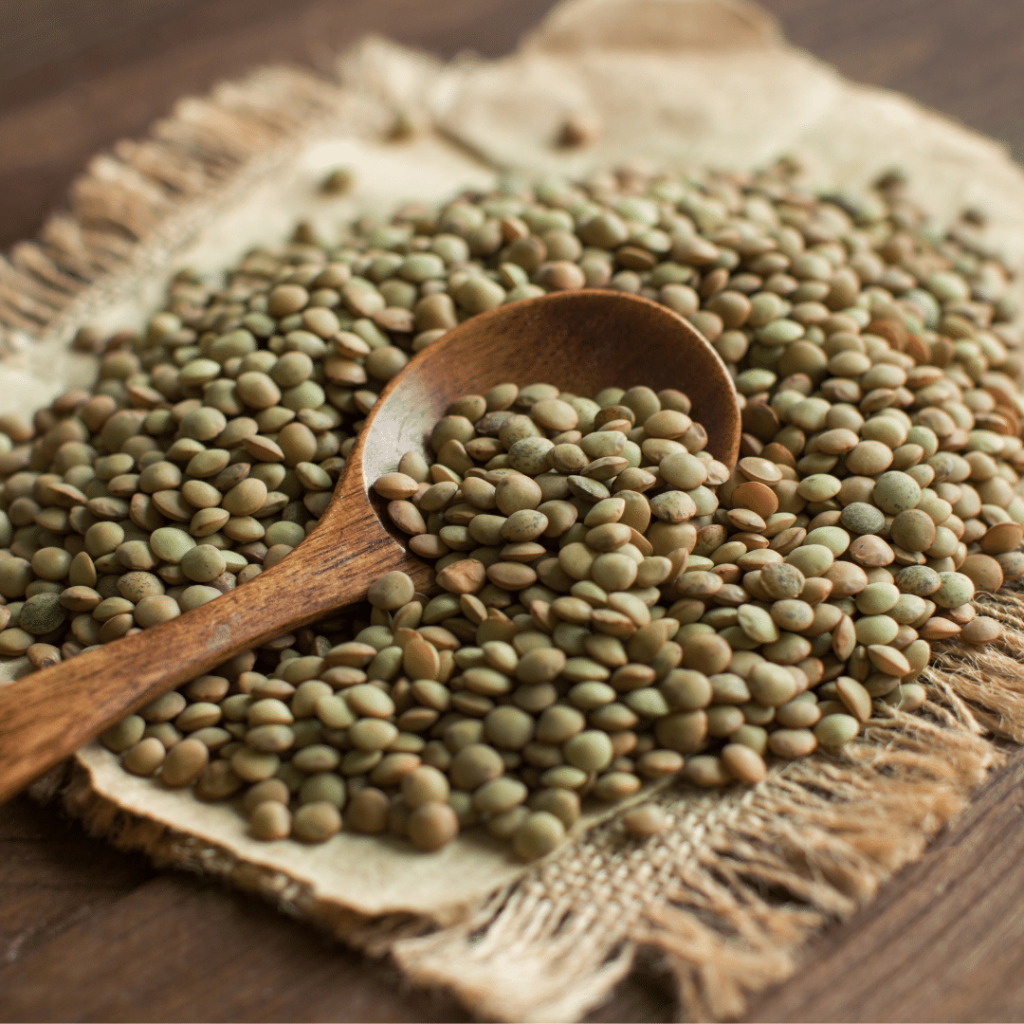 green lentils and a wooden spoon, legumes, green lentils, puy lentils, raw green lentil, vegetarian protein, healthy legume, healthy protein