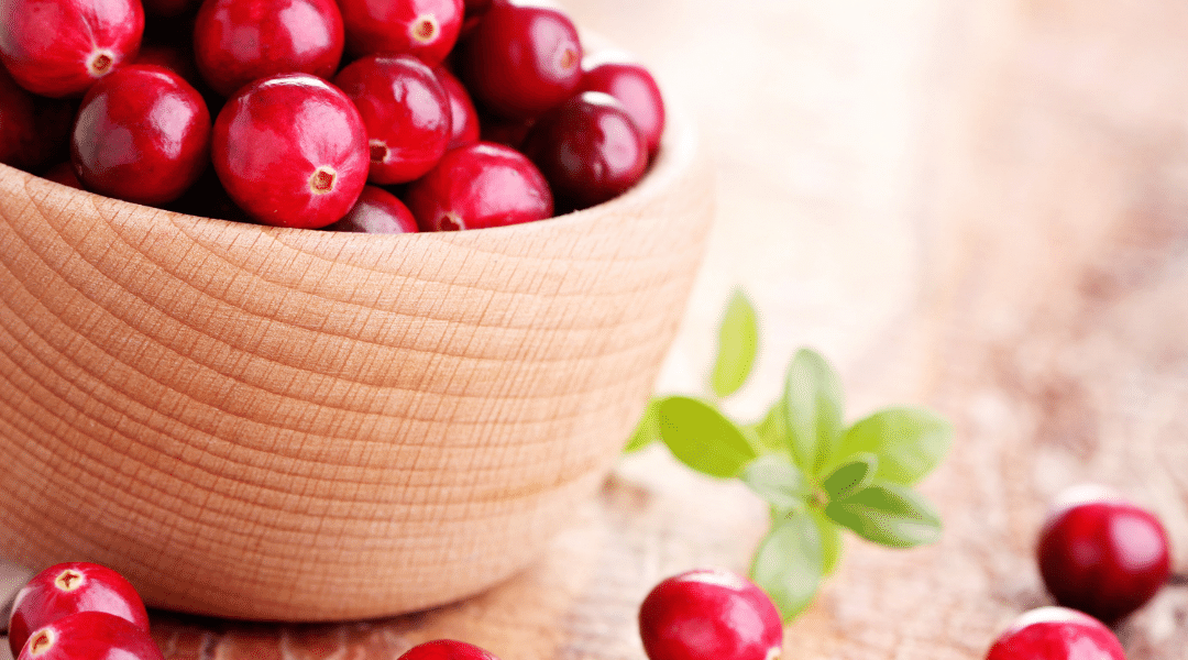 Cranberries – The Ruby Superfood
